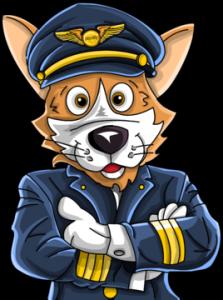 Piqosity Pilot