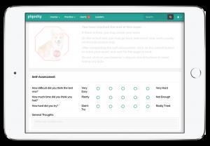 self assessment screenshot