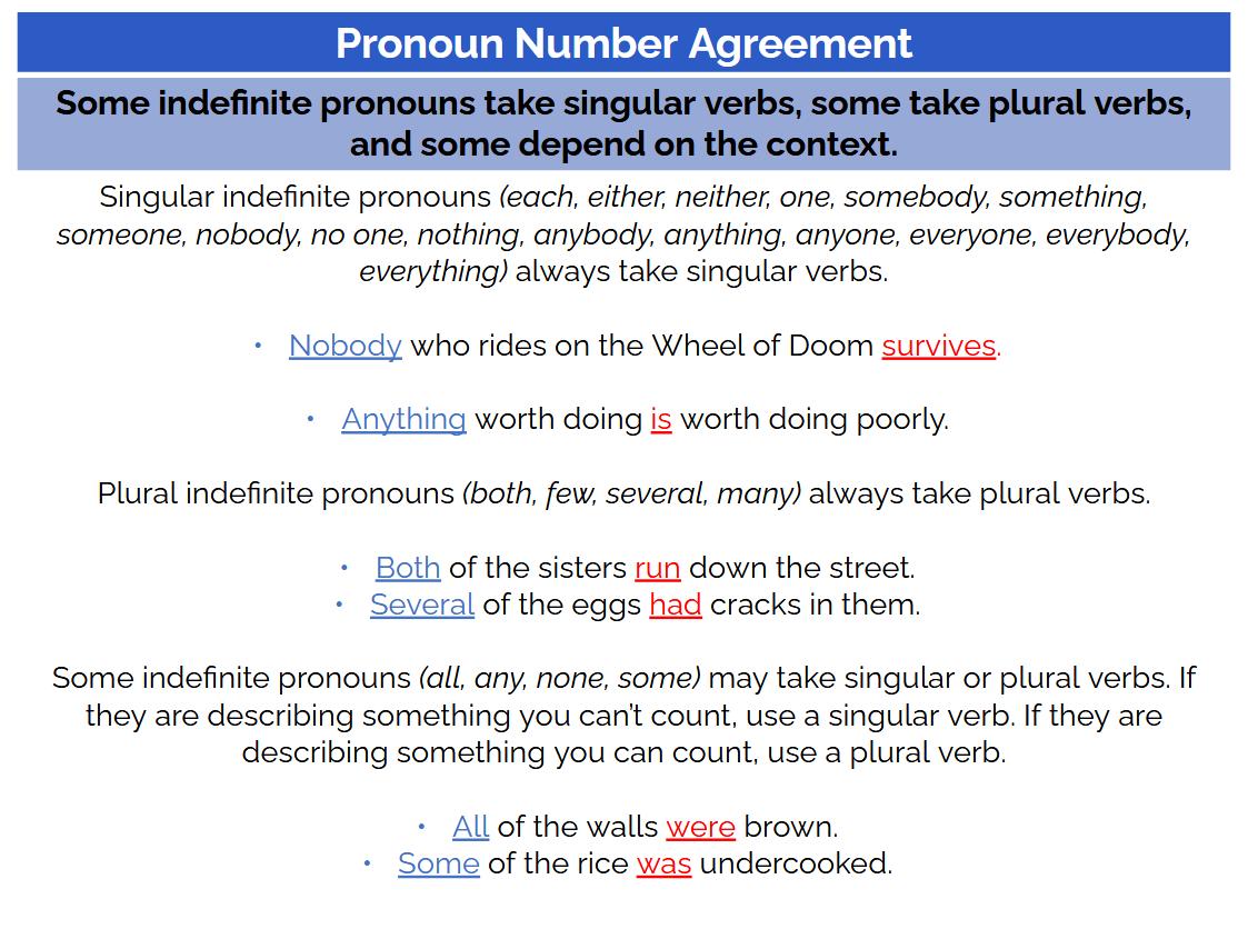 ACT grammar practice: pronoun number agreement