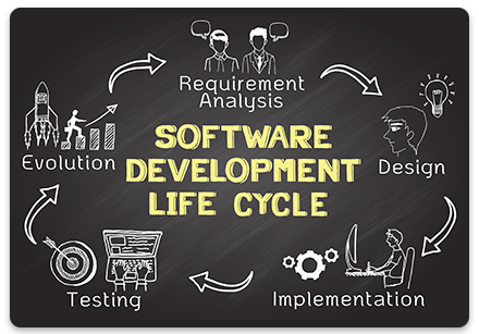 Piqosity development cycle
