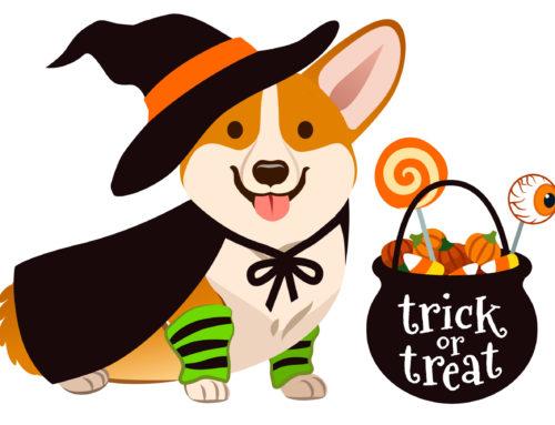Free Halloween Reading Activities & English Activities